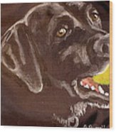 Shadow With Ball Wood Print