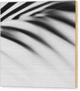 Shadow Zen. Palm Leaf. Monochrome Wood Print by Jenny Rainbow