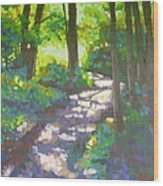Shadowed Path Wood Print