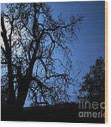 Shadowlands 1 Wood Print