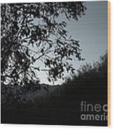 Shadowlands 2 Wood Print