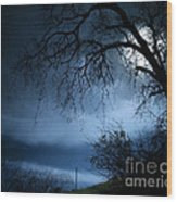 Shadowlands 3 Wood Print