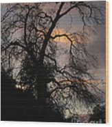 Shadowlands 5 Wood Print