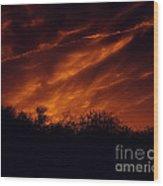 Shadowlands 7 Wood Print
