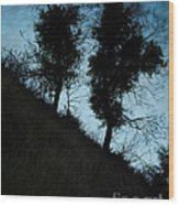 Shadowlands 8 Wood Print