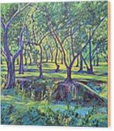 Shadows At Noon - Indian Landscapes Wood Print