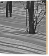 Shadows In Boyertown Park Wood Print