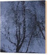 Shadows Of Reality  Wood Print