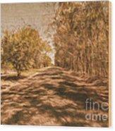 Shadows On Autumn Lane Wood Print