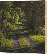 Shady Country Lane Wood Print by Paul Herrmann