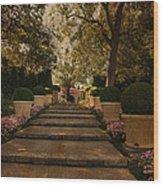 Shady Garden Walk Wood Print by Cindy Rubin