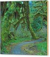 Shag Carpet Wood Print