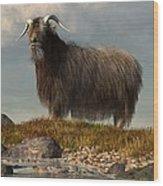 Shaggy Goat Wood Print
