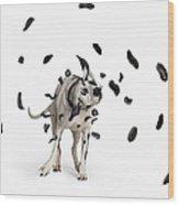 Shake The Spots Off Wood Print
