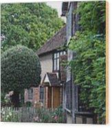 Shakespeare's Back Garden Wood Print