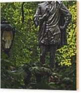Shakespeare In Central Park Wood Print