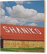 Shaniko Sky And Building Wood Print