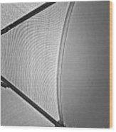 Shape No.3 Light Gray Scale Wood Print