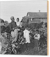 Sharecropper Family, 1902 Wood Print