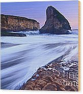 Shark Fin Tide - Santa Cruz California Wood Print by Jamie Pham