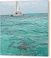 Shark N Sail I Wood Print