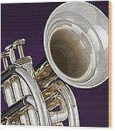 Sharp Silver Trumpet Wood Print