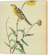 Sharp-tailed Bunting Wood Print by Philip Ralley