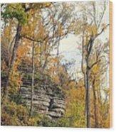 Shawee Bluff In Fall Wood Print