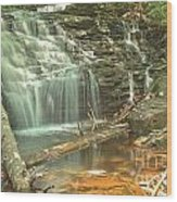 Shawnee Falls At Ricketts Glen Wood Print