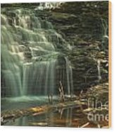 Shawnee Falls In The Spring Wood Print