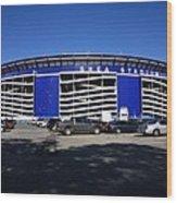 Shea Stadium - New York Mets Wood Print by Frank Romeo