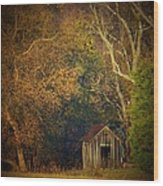 Shed And Trees Wood Print by Joyce Kimble Smith