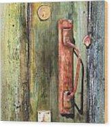 Shed Door Wood Print