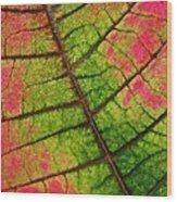 Shed Foliage Wood Print