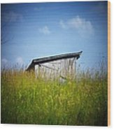 Shed In Field Wood Print by Joyce Kimble Smith