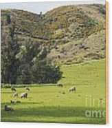 Sheep Country Wood Print