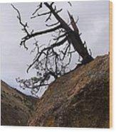 Sheep Creek Canyon Wyoming 10 Wood Print