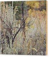 Sheep Creek Canyon Wyoming 11 Wood Print