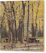 Sheep Creek Canyon Wyoming 13 Wood Print