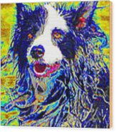 Sheep Dog 20130125v1 Wood Print by Wingsdomain Art and Photography