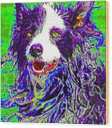 Sheep Dog 20130125v4 Wood Print