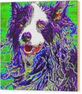 Sheep Dog 20130125v4 Wood Print by Wingsdomain Art and Photography
