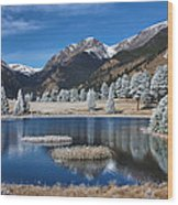 Sheep Lakes In Late October Wood Print