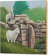 Sheep On A Rock Wall Wood Print