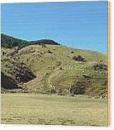 Sheep On Hill Wood Print