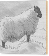 Sheep Sketch Wood Print