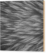 Sheepskin Wood Print