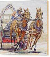 Sheer Horsepower Wood Print by Don Dane