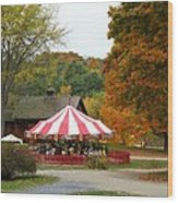 Shelbourne Vermont Antique Carousel Wood Print