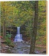 Sheldon Reynolds Falls And Kitchen Creek Wood Print